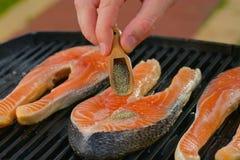 Часть свежего salmon филе с травами на a Стоковые Фотографии RF