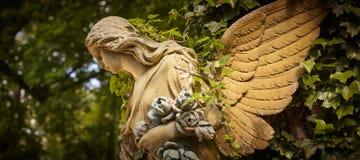 Часть старого ангела скульптуры в золотом зареве в старом кладбище Стоковое Изображение