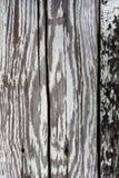 Часть старых деревянных доск с слезать белую краску, предпосылку Стоковая Фотография RF