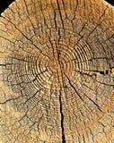 Часть стены старого деревянного дома Стоковое фото RF