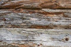 Часть стены сделанной деревянных журналов Стоковая Фотография RF