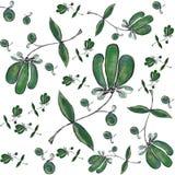 Часть сценарных изображений флористической предпосылки Стоковое Фото