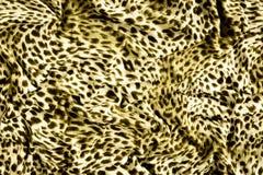 Часть ткани тигра одежд Стоковая Фотография RF