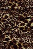 Часть ткани тигра одежд Стоковое фото RF