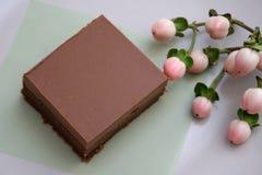 Часть торта пирожного шоколада клейковины свободного домодельного стоковая фотография rf