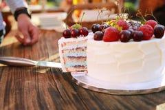 Часть торта frash домодельного со свежими ягодами и плодами стоковое фото rf