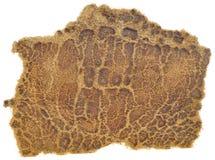 часть треснутая коричневым цветом кожаная старая Стоковое фото RF