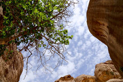 Часть утеса в 1 путь 2km длинный (как-Siq) в городе Petra, Джордане Стоковые Изображения RF