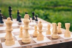 Часть шахматной доски с шахматными фигурами на зеленом естественном backg Стоковые Изображения RF