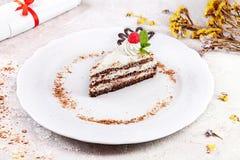 Часть шоколадного торта с мятой на плите, конец-вверх стоковое фото rf