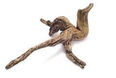часть driftwood Стоковое Изображение