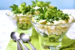 Часть vegetable салата с картошкой, яичком и огурцом Стоковое фото RF