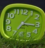 Часы на траве Стоковая Фотография RF