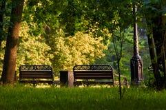 Час парка города стенда золотой стоковое изображение