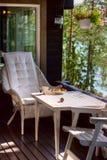 Чашек чаю в пуще Стоковое Изображение
