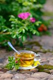 Чашек чаю с canker-цветенем Стоковое фото RF
