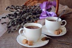 2 чашек чаю Стоковые Фото