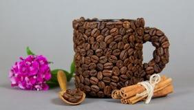 Чашка Брайна сделанная от зерен кофе Стоковые Изображения