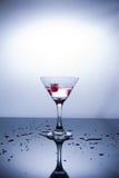 Чашка водочки на белой предпосылке стоковые фотографии rf