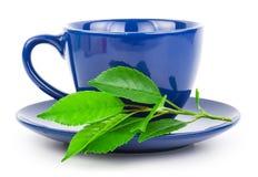чашка выходит вектор чая стоковые изображения rf