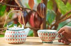 Чашка владением руки с горячим шоколадом Стоковое Изображение