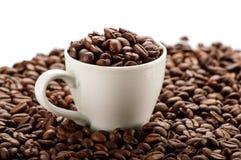 Чашка в кофейных зернах Стоковая Фотография