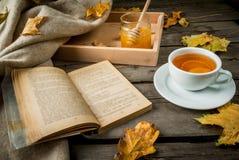 Чашка горячего чая с лимоном и имбирем на деревенской таблице Стоковые Фото