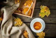 Чашка горячего чая с лимоном и имбирем на деревенской таблице Стоковая Фотография