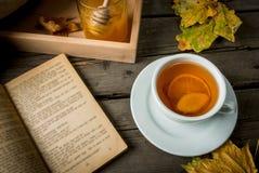 Чашка горячего чая с лимоном и имбирем на деревенской таблице Стоковое Изображение RF