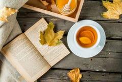 Чашка горячего чая с лимоном и имбирем Стоковое Изображение