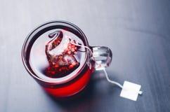 Чашка горячего чая с пакетиком чая На естественной, темной предпосылке Чашка от ясного стекла стоковая фотография rf