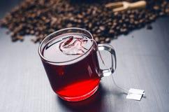 Чашка горячего чая с пакетиком чая На естественной, темной предпосылке Чашка от ясного стекла стоковая фотография