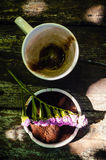 Чашка горячего шоколадного молока Стоковые Изображения RF