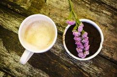 Чашка горячего шоколадного молока Стоковая Фотография