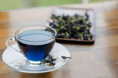 Чашка голубого чая Стоковые Фото