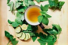 Чашка зеленого чая с известкой Стоковые Фотографии RF