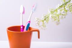 Чашка зубной щетки Стоковое Изображение