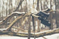 Чашка и бинокли вися в мертвой ветви дерева Стоковое Изображение RF