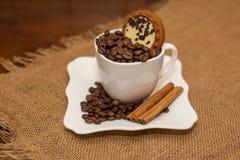 Чашка и поддонник печенья циннамона кофейных зерен белые Стоковое Фото
