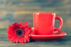 Чашка кофе и красная маргаритка gerbera стоковое фото