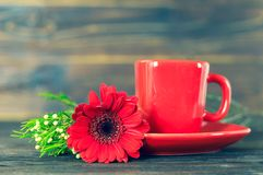 Чашка кофе и красная маргаритка gerbera на деревянном столе стоковые изображения