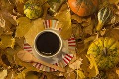 Чашка кофе окруженная листьями и тыквами желтого цвета стоковое фото