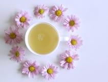 Чашка кофе с розовыми цветками Leucanthemum Плоское положение, взгляд сверху Пустой космос для вашего текста Стоковая Фотография