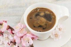 Чашка кофе с цветками вишневого цвета Стоковое фото RF