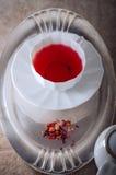 Чашка красного чая плодоовощ Стоковые Изображения RF