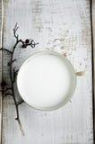 Чашка молока стоковое фото rf