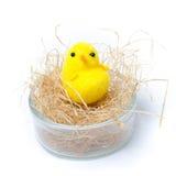 Чашка пасхального яйца на белой предпосылке Стоковые Фото