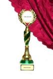 Чашка победителей Стоковые Фото