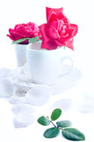 Чашка роз Стоковые Изображения RF