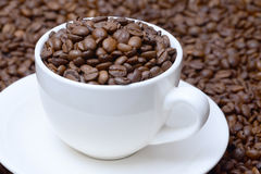 Чашка с зернами кофе на поддоннике Стоковые Фото